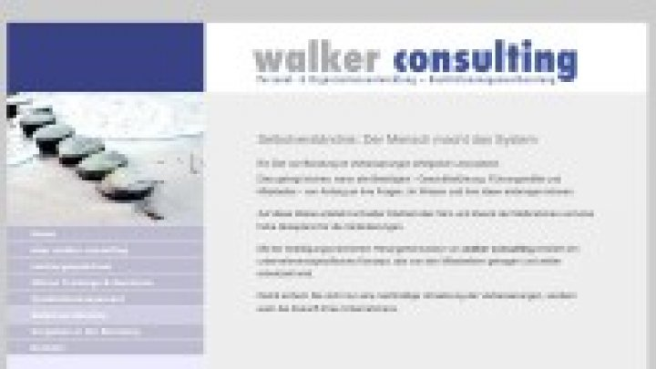 walker consulting