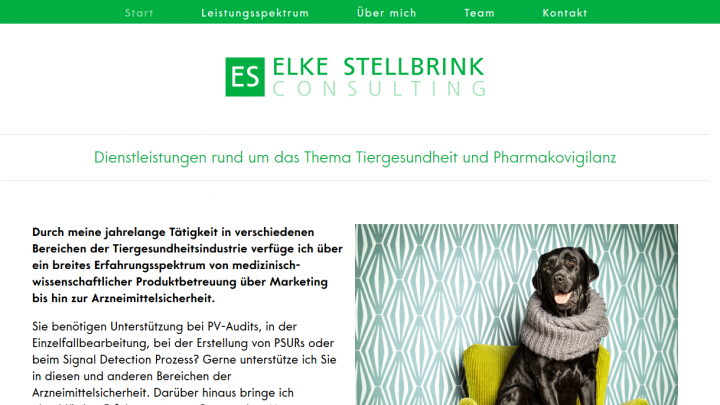 Stellbrink Consulting